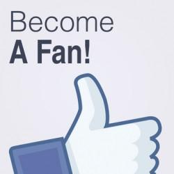 Top ten des marques sur Facebook et évolution de la «fan-attitude» en France
