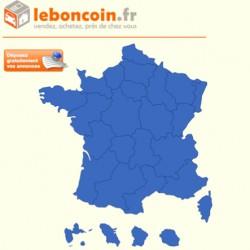 Tendances marketing : le succès emblématique de leboncoin.fr
