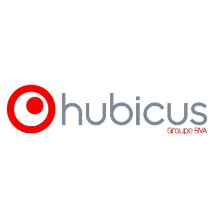 Viséo Conseil et Telemetris fusionnent pour former Hubicus et intègrent le groupe BVA