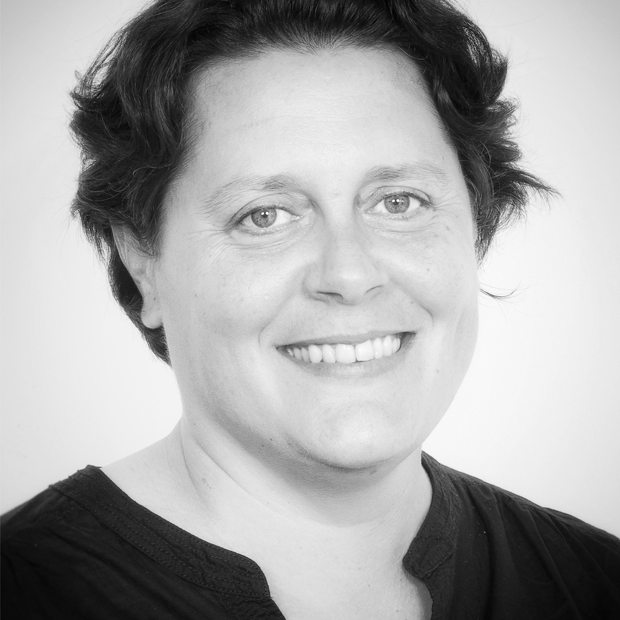 Diane Hion - Audirep